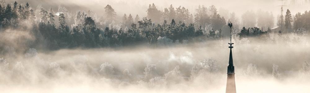 Merveilleux dans la brume